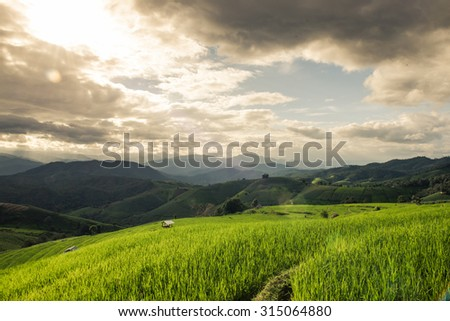 Green terraced field with light ray, mountain and cloud when sunset - stock photo