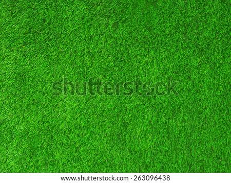 Green texture grass background - stock photo