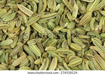 green the fennel seeds abstract background - stock photo