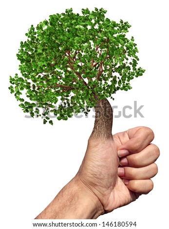 Green thumb and fingers environment and conservation concept with a tree growing from the hand while gesturing OK as a symbol of nature and gardening skills on a white background. - stock photo