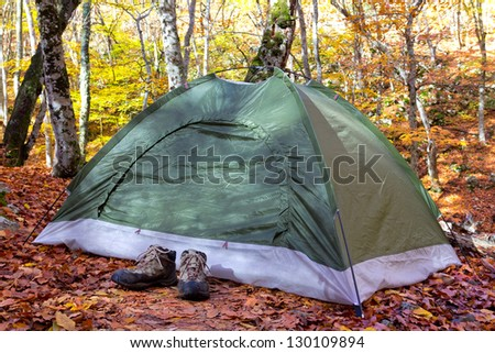 green touristic tent in a forest - stock photo