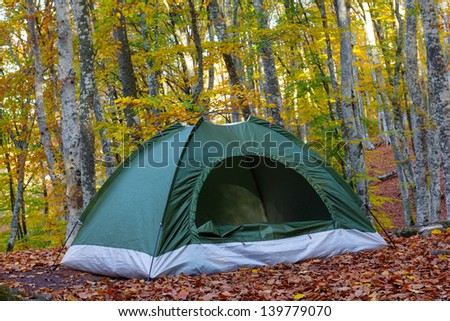 green touristic tent in a forest