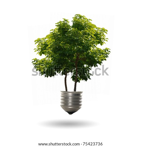 green tree growing out of a bulb - stock photo