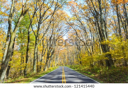 Green Tunnel section of Shenandoah National Park in autumn - stock photo