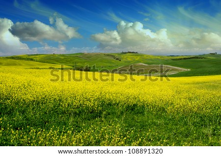 Green tuscany landscape in spring time, Italy