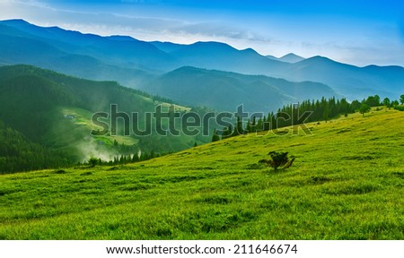 Green valley in Carpathian mountains.