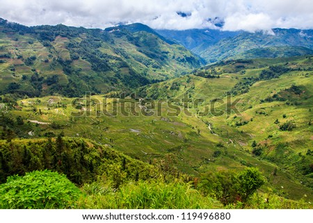 Green valley landscape of rice terraces in China - stock photo