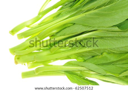 Green Vegetables On White background,  Chye Sim