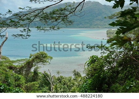 Green vegetation with ocean view, Bourayne bay, Huahine island, south Pacific ocean, French Polynesia