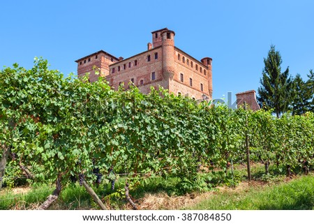 Green vineyards and medieval castle under blue sky in Piedmont, Northern Italy.