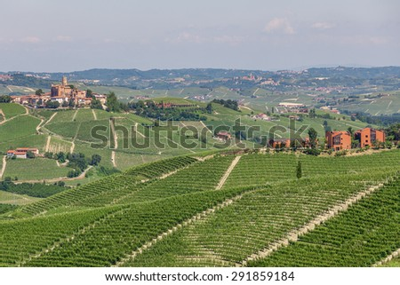 Green vineyards on the hills and small towns on background in Pi - stock photo