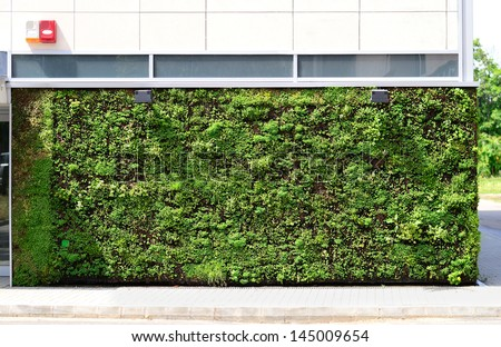 Green wall building in the city - stock photo