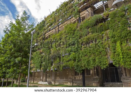 Green wall in a sustainable building, with vertical garden in the facade