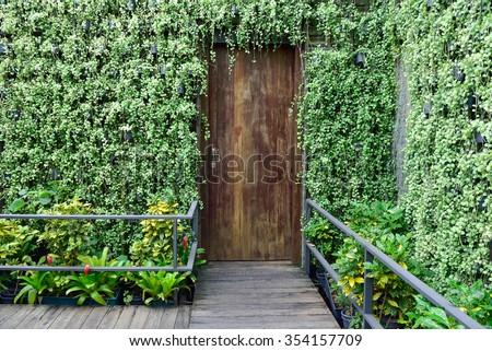 Green Wall Vertical Garden And Wooden Door