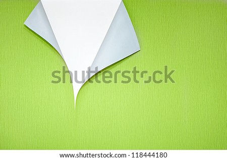 green wallpaper with curled corner and white copyspace - stock photo