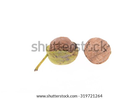 Green walnuts on a white background