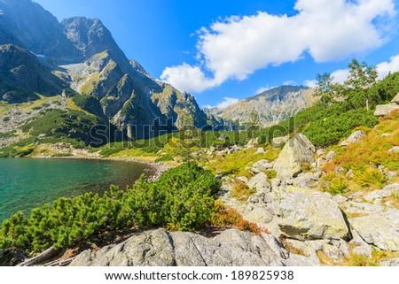 Green water of Czarny Staw mountain lake, High Tatry Mountains, Poland - stock photo