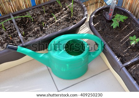 Green watering can and seedlings (tomato, onion) in flower boxes as part of urban garden on the balcony - stock photo