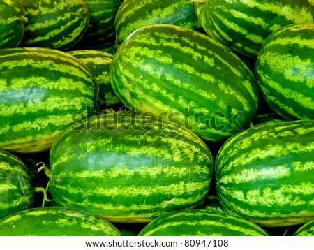 Green watermelons close-up - stock photo