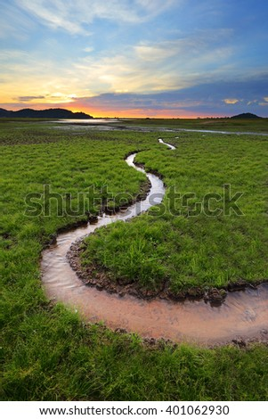 Green wetland or curves river after sunset - stock photo