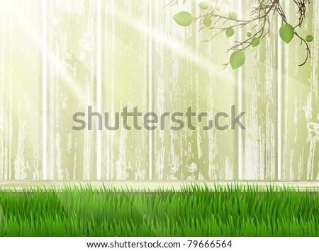 green yard with wooden fence and green grass
