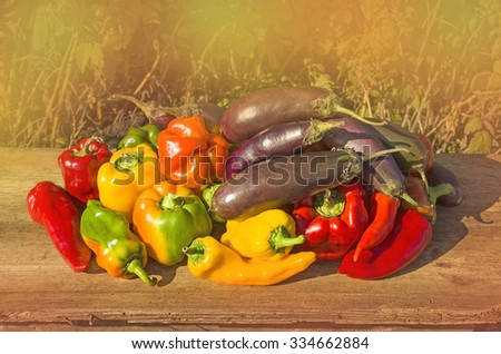 Green , yellow and red pepper, eggplants. Fresh colorful bell peppers,  aubergines  on wood. Healthy organic vegetables. Group of colorful peppers,  aubergine  on the wooden background. - stock photo