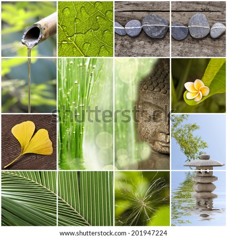 Green zen asia collage