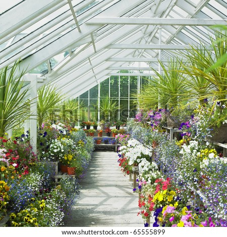greenhouse, Birr Castle Gardens, County Offaly, Ireland - stock photo