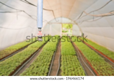 Greenhouse for vegetables - irrigation - drop by drop system - stock photo