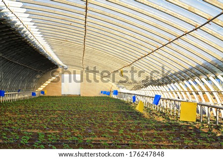 greenhouse metal frame in a farm, closeup of photo