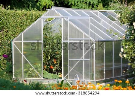Greenhouse with tomato plants - stock photo