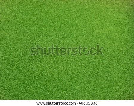 Greens - stock photo