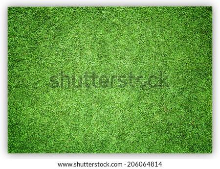 greensward football field background Green field - stock photo