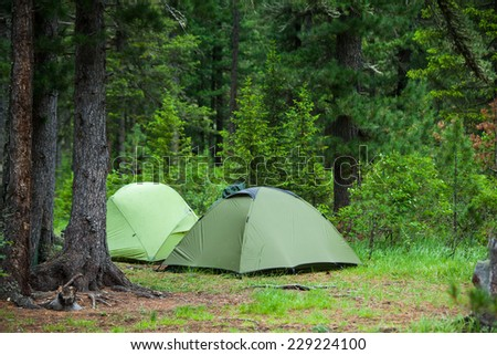 Greent tourist tents in forest at campsite - stock photo