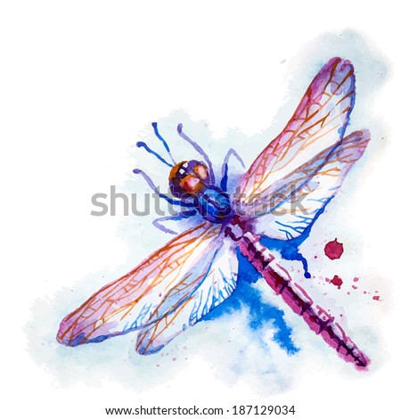 Greeting background with beautiful watercolor flying violet dragonfly - stock photo
