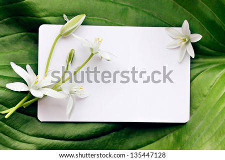 Greeting card and a bouquet of white lilies - stock photo