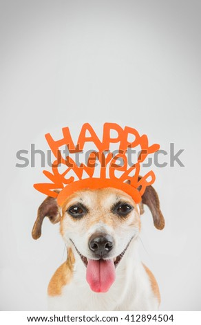 greeting card Happy new year Christmas party dog. Idea for holiday congratulations card party. Vertical composition - stock photo