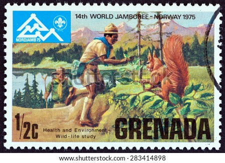 GRENADA - CIRCA 1975: A stamp printed in Grenada issued for the 14th World Scout Jamboree, Norway shows wildlife study, circa 1975. - stock photo