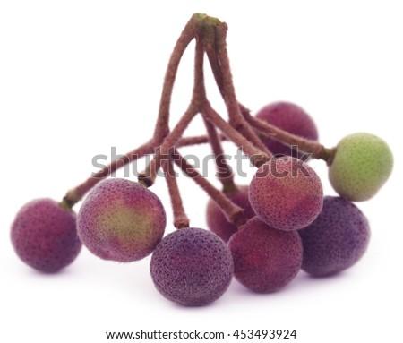 Grewia asiatica or Falsa fruits of Southeast Asia - stock photo