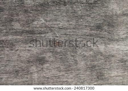 Grey Grungy Wood Background - stock photo