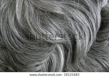 Grey hair - stock photo