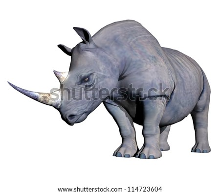 Grey rhinoceros head down in white background - stock photo