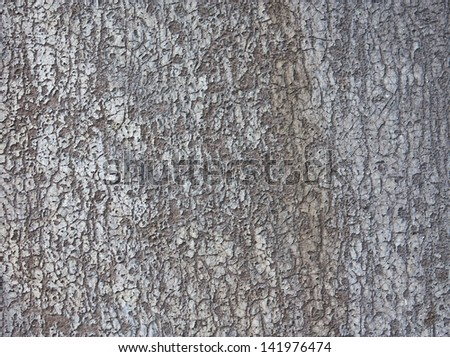 Grey texture of old tree bark horisontal