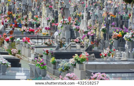 Grey tombstones decorated with many bright flowers in an spanish cemetery