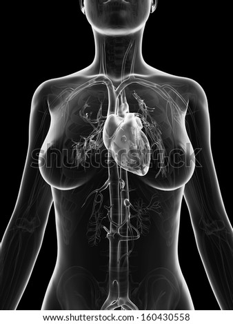grey, transparent heart of a female - stock photo