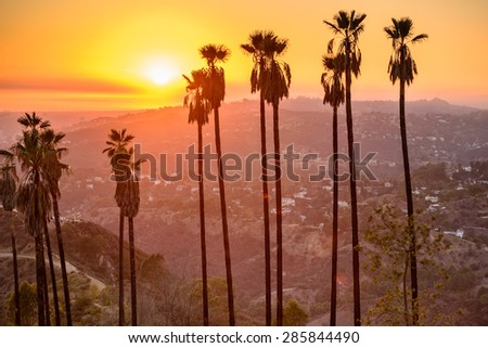 Griffith Park, Los Angeles, California, USA. - stock photo