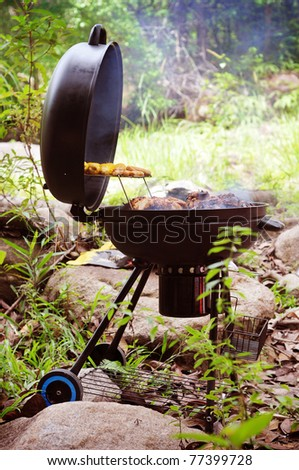 grill chicken on barbe que isolated green forest - stock photo