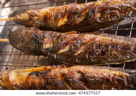 Grilled catfishes