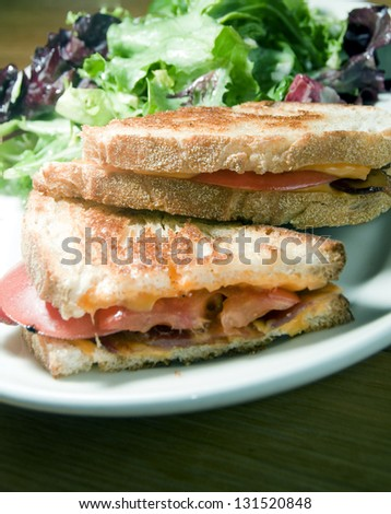 grilled cheese sandwich bacon tomato with vinaigrette salad and coleslaw dill pickle - stock photo