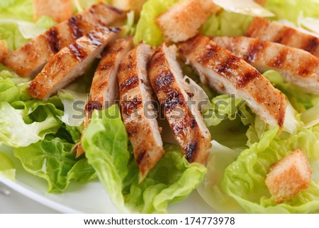 grilled chicken breast on white plate. - stock photo